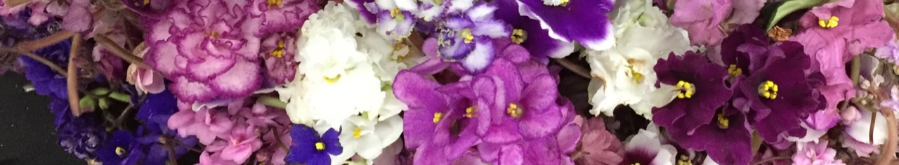 Central California African Violet Society